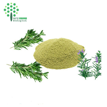 Antioxidants plant extract water soluble rosemary extract rosmarinic acid anti inflammatory