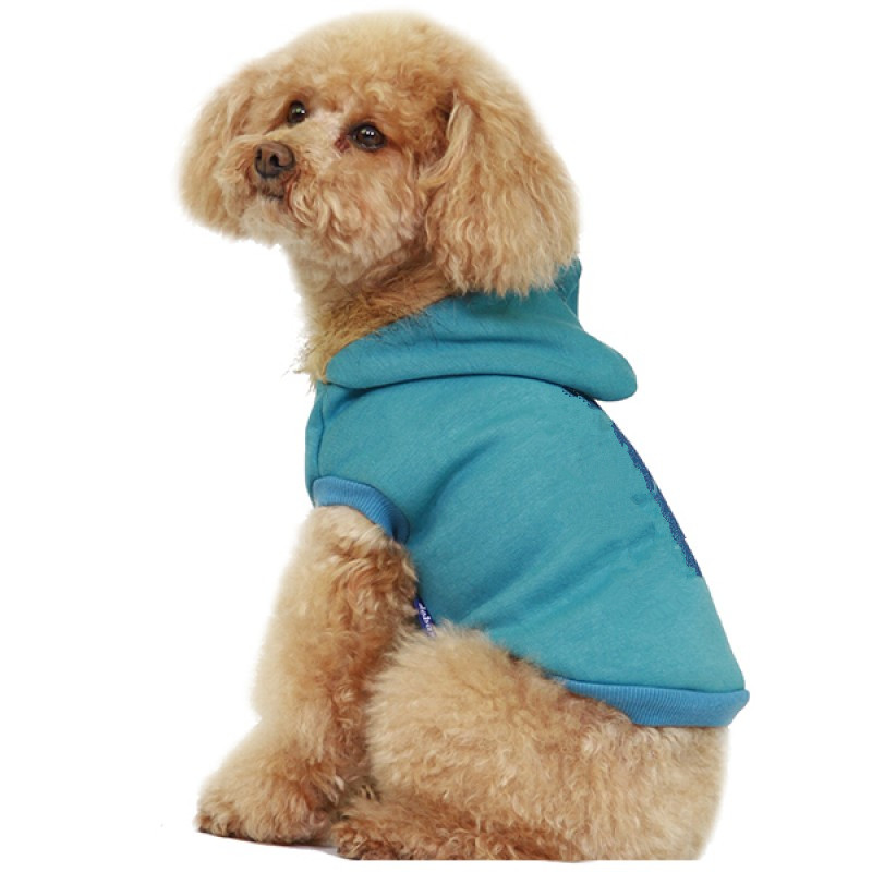 blank cute dog hoodie blue dog clothes bulk