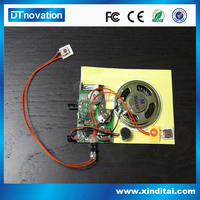 Factory price voice recordable motion sensor sound chip