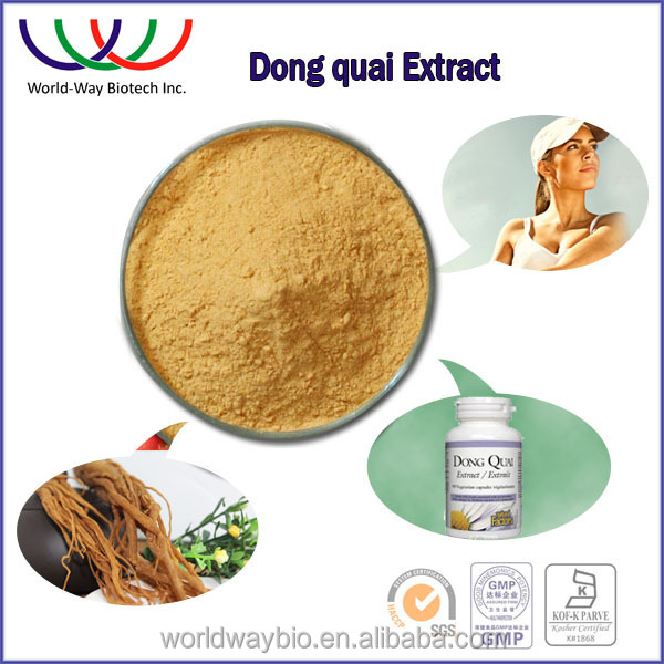 China leading herbal extract manufacturer supply top quality plant extract angelica