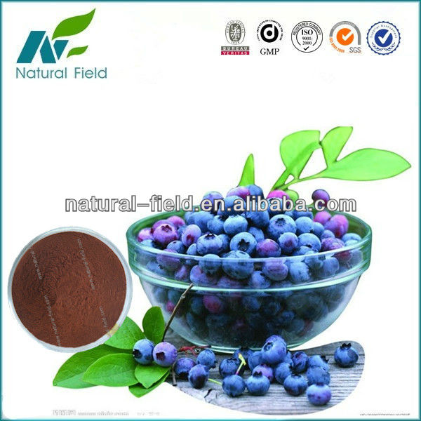 Purple powder of Vaccinium myrtillus P.E.25%Anthocyanins