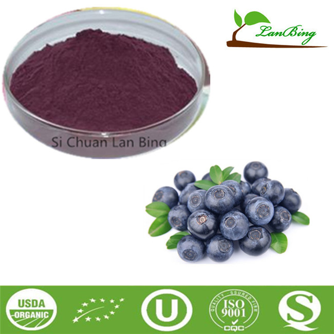 LanBing supply high quality natural blueberry P.E. blueberry extract powder for anti-aging