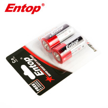 Hot Selling Promotional R14 C Size Battery