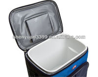 Beautiful Removable Hard Liner Lunchbox/Coolers