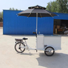 New style ice cream cart mobile refrigerator delivery tricycle for sale