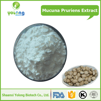 Herbal Medicine Mucuna Pruriens Extract Pure L-dopa Powder Price