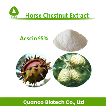 Top quality horse chestnut extract Aescin 95% 98% CAS No.6805-41-0