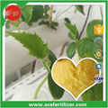 Soluble Fertilizer NPK 40-5-3 Special For Hydroponic Cucumber