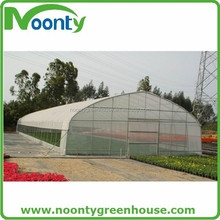 Macron Vegetable Tunnel Green House