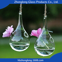 China Wholesale Low Price Eco-Friendly Transparent Different Types Hanging Glass Vase