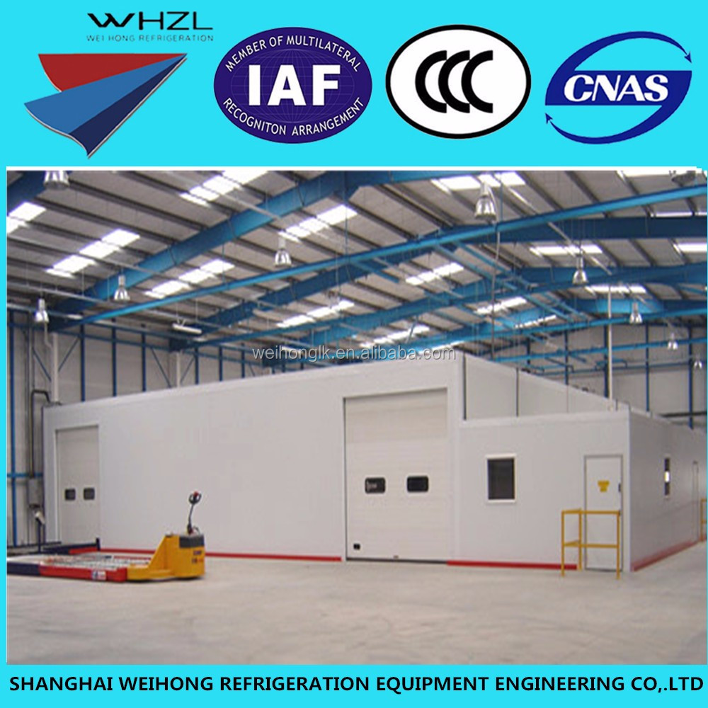 China Manufacturer Oversea Service Cold Storage Rooms / Deep Freezer Project