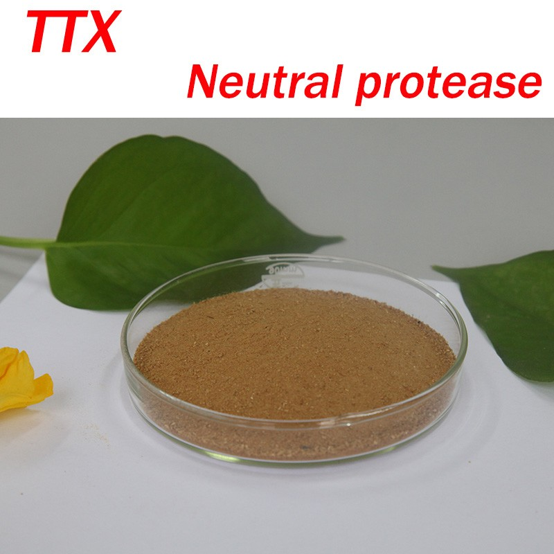 Food grade Neutral Protease(Powder) used for feed additive