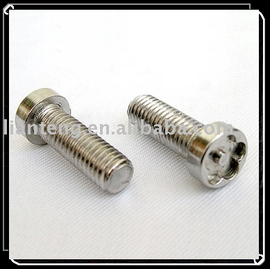 Non-standard Screw,Special Screw according to drawing, Special Torx Bolt with Pin in center