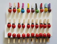 25MM wooden pegs with Ladybug adhesive Decorative scrapbooking DIY