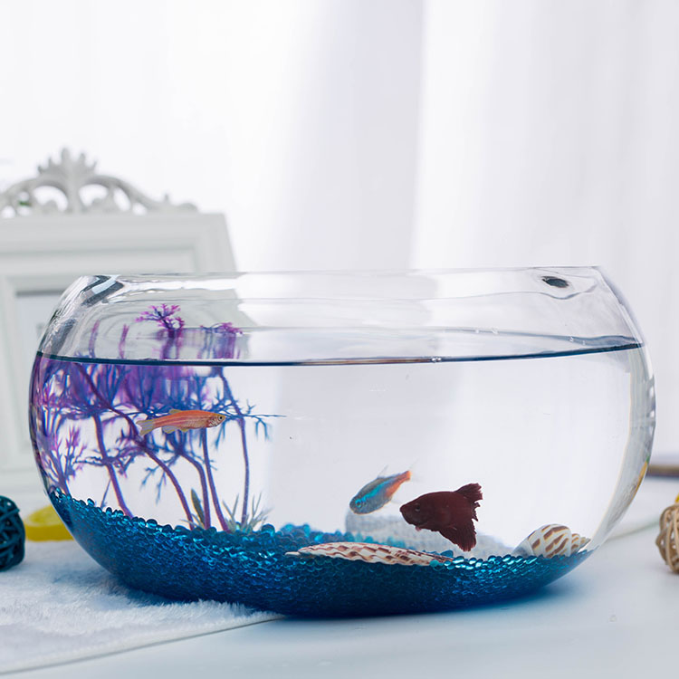 List manufacturers of round plastic fish bowl buy round for Plastic fish bowls bulk