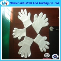 disposable food handling gloves/PE gloves for barbecue/gloves for handicap for sale