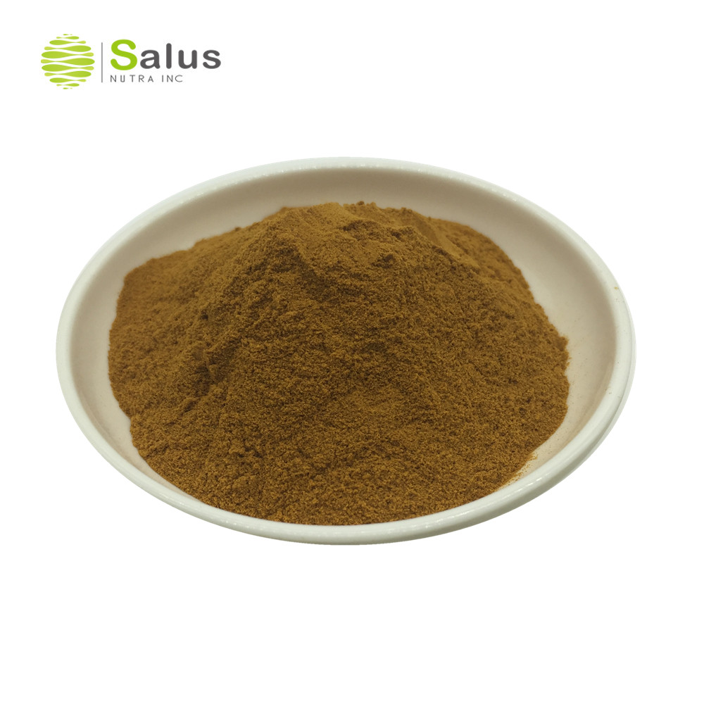 Black Cohosh Root Extract Powder Triterpenoid Saponis