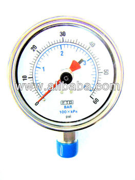 Liquid-filled Pressure Gauges With Maximum Pointer, Gauges