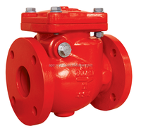 Industrial valve fire fighting standard check valve