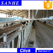 dairy cow steel structure shed design of light steel structure