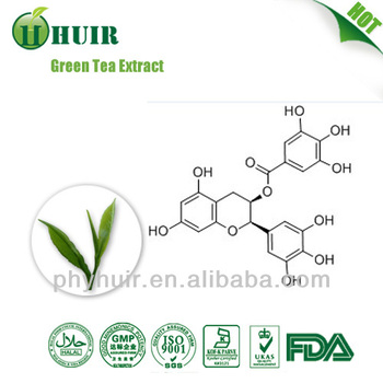 Green Tea Extract polyphenols------ask Vivian