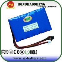 Hot Battery Price 18650 12V Lithium TOY Children Car Battery