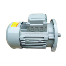 Totally Enclosed Protect Cast Iron 75kw 100hp Three Phase Electric AC Motor
