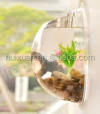 "Wall Mounted Fish Bowl Bubble for Goldfish & Beta or Hanging Terrarium with Exclusive ""Lets Get Started Guide"" - 10 in Diameter"