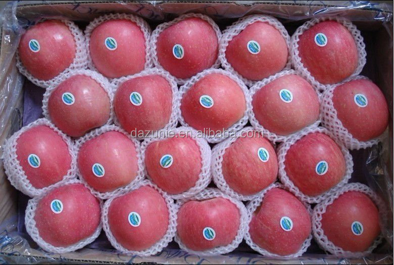 Fresh Blush Red Fuji Apple