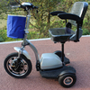 popular 3 wheel brushless 500w electric tricycle/rickshaw