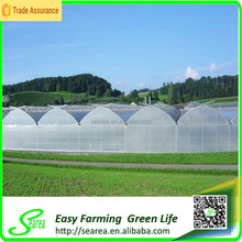 Hot sales Galvanized steel multi-span green house plastic film
