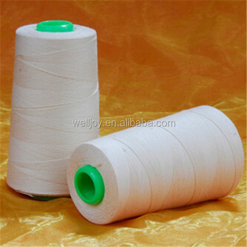 20s/3 Shoes Sewing Thread