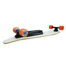 double drive 250w*2 brushless dc motor 36V battery electric skateboard