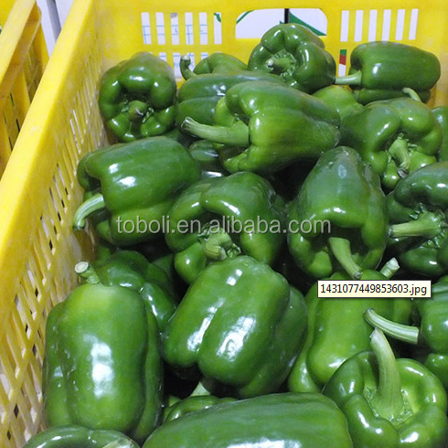 200g Fresh Bell pepper/color capsicums