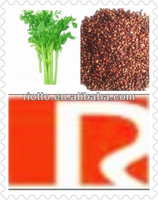factory supply 100% pure nature Celery seed powder extract 5% Apigenin
