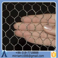 New fashionable hot sale strong galvanized wire outdoor dog kennels/pet houses/pet cages