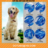 2017 wholesale colorful sparkle soft dog nail caps dog grooming nail caps Anti Scratch Dog Cat Claw Cat Nail Caps
