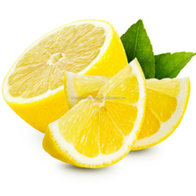 Import Agent Of Fresh South Africa Lemon china trade agents import fruit