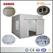 Chinese Manufacture Small Blast Freezer Room for Meat Fish For Sale