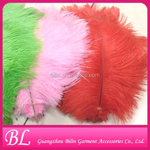 high quality colorful ostrich feather for Chrismas decoration
