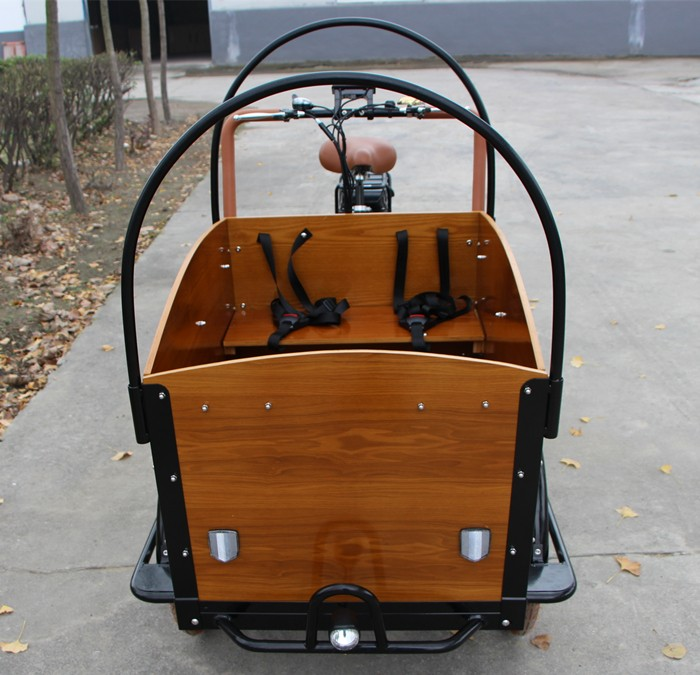 The newest luxury electric tricycle with raincover