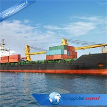 Top Producer China To Singapore Cheap Ocean Freight To Usa Sea Freight