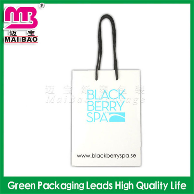 100% recycled plastic delivery bags newspapers