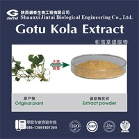 1kg/bag HPLC 40% Centella Asiatica Extract Total Triterpenes