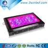 LED Grow Lamps Customized Color Ratio Full Spectrum 600W LED Grow Light for Commercial Grow