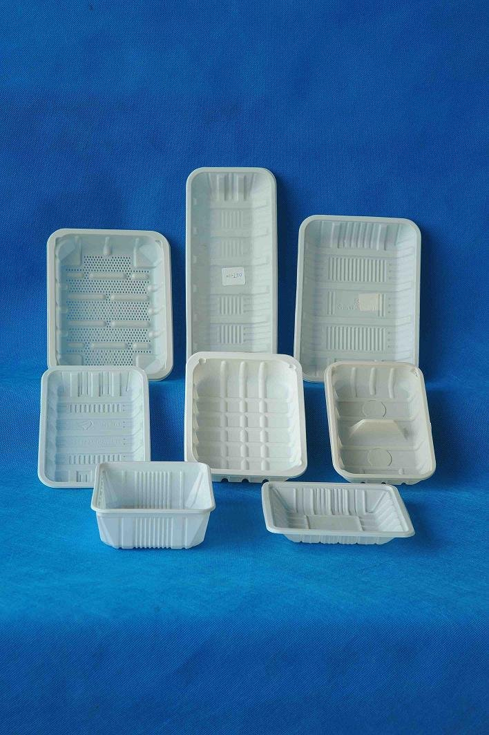 Biodegradable Disposable Fresh Tray