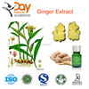 Cheap Ginger extract supplier