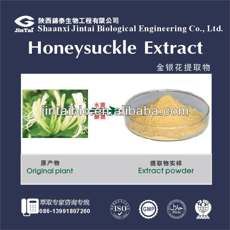 100% natural HoneySuckle Flowers Plant Extract Chlorogenic Acid 5%-98% for hot sale