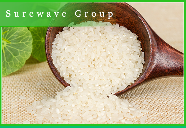 VIETNAM LONG GRAIN WHITE RICE WITH BEST PRICE