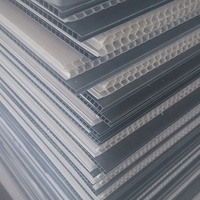 PP corrugated sheet 2.5mm 3mm 4mm plastic sheet for floor protection